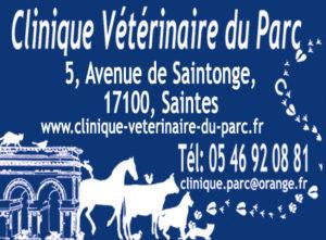 clinique-du-parc-saintes-veterinaire-charente-maritime