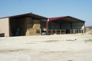 deux-hangars-a-gauche-avec-des-bottes-de-paille-a-droite-manege-pour-les-cours-ecuries-nicolas-mergnac.