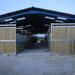 ecuries-nicolas-mergnac-portes-en-bois-ouvertes-on-voit-les-box-de-chaque-coté-des-chevaux