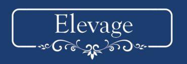 logo-elevage