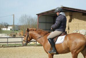 cavalier-sur-cheval-marron-clair-dans-carriere-ecuries-nicolas-mergnac-charente
