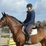 cavaliere-sur-un-cheval-marron-ecuries-nicolas-mergnac