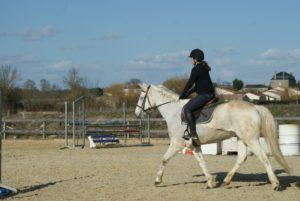 cheval-blanc-avec-sa-cavaliere-qui-trote-ecuries-nicolas-mergnac