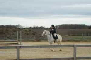 cheval-blanc-monte-par-une-cavaliere-dans-la-clairiere-ecuries-nicolas-mergnac-charente.j