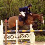 cheval-marron-clair-sautant-ostacle-avec-cavalier-ecuries-nicolas-mergnac-nercillac-charente-