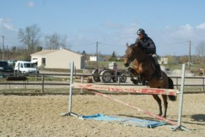 cheval-marron-qui-saute-un-obstacle-ecuries-nercillac