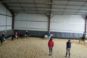 cinq-poneys-montes-par-leurs-cavaliers-lors-un-cours-dans-le-manege-couvert-ecuries-nicolas-mergnac
