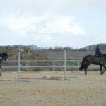 deux-chevaux-cours-poney-club-ecuries-nicolas-mergnac-nercillac.j
