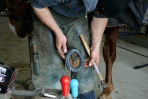 marechal-ferrand-qui-pose-un-fer-a-cheval-avec-une-semelle-noire-protectrice-dessous-ecuries-nicolas-mergnac