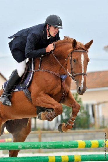 nicolas-mergnac-saut-cheval