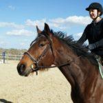 portrait-cheval-marron-monte-avec-sa-cavaliere-ecuries-nercillac-charente