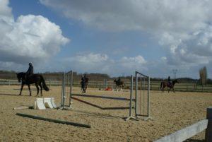 quatres-chevaux-montes-par-leurs-cavaliers-lors-un-cours-ecuries-nicolas-mergnac-charente.